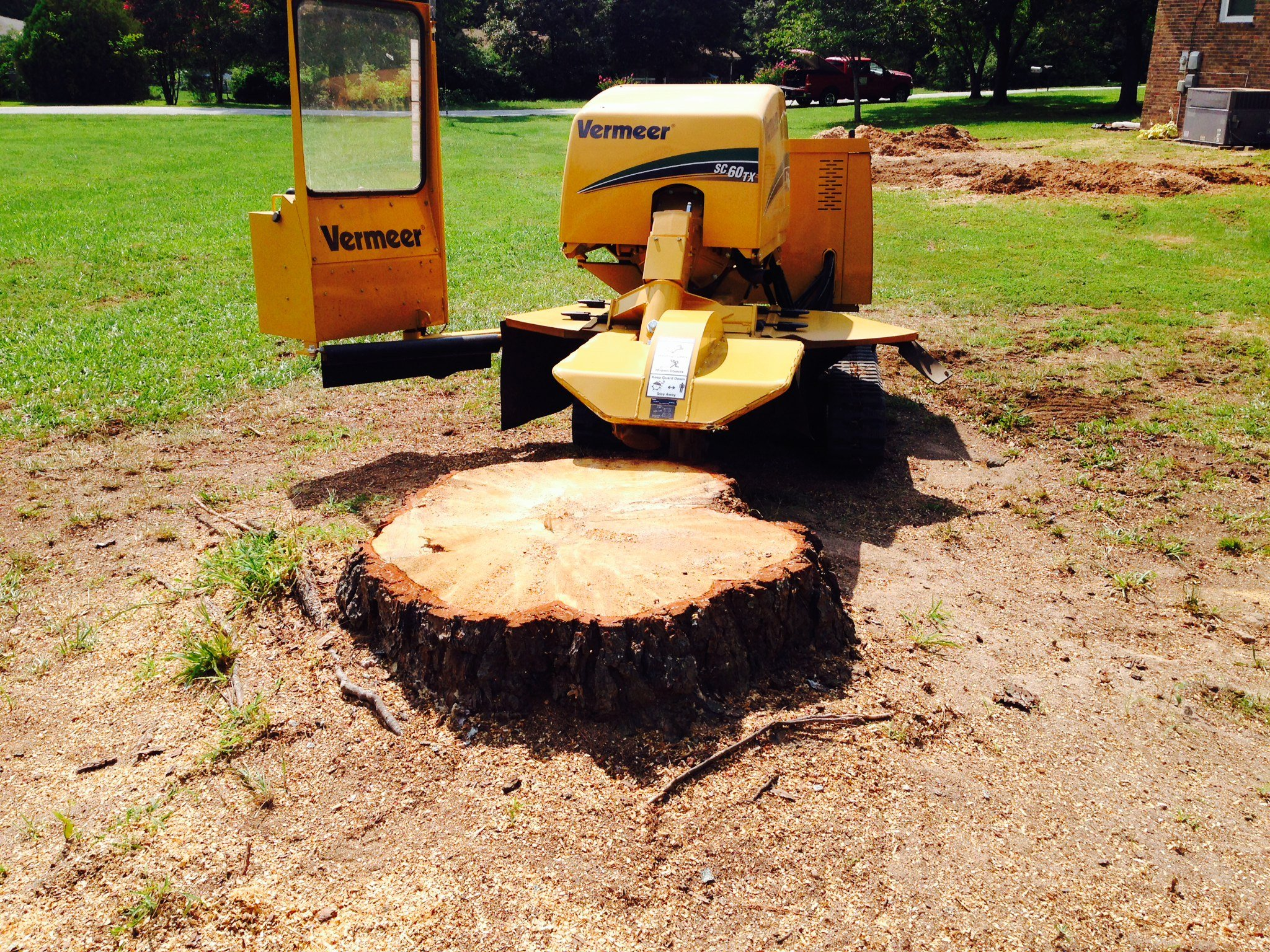 Tree Stump Removal Methods Amp Tips HomeAdvisor