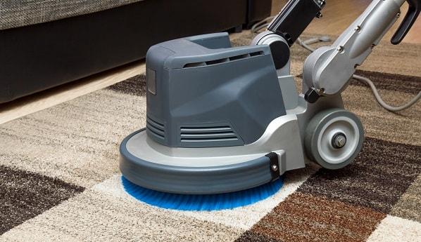 professional carpet cleaning vs diy