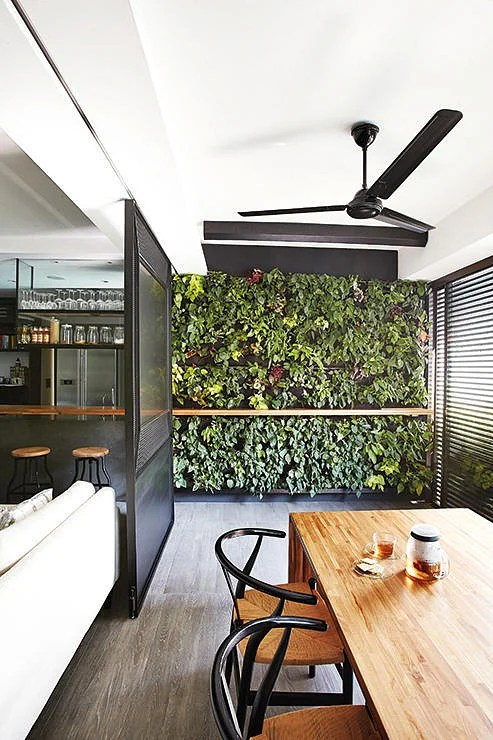 Renovation Get A Green Wall Even If You Dont Have A