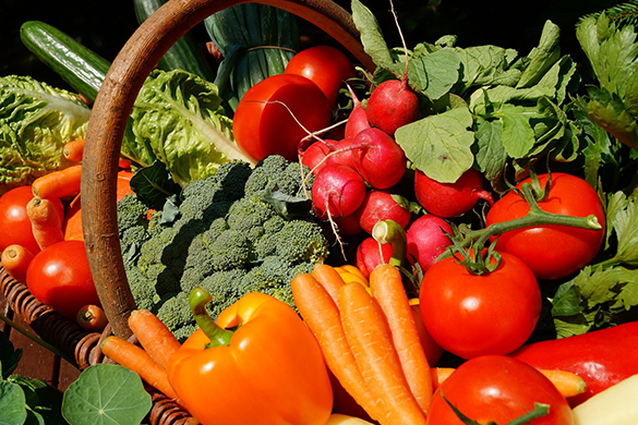 Summer garden diy tips and ideas for growing vegetables