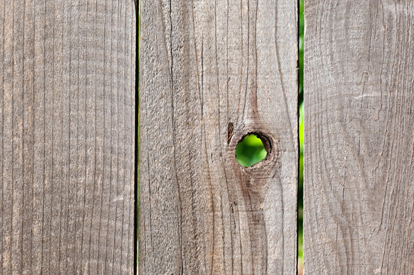 Knotting on wooden fence without sealant