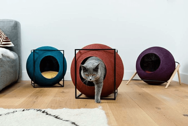 DESIGN FURNITURE FOR PETS With 5 DIY bonuses that will make your home pet-friendly without losing style