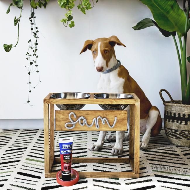 comedero con soporte para perro DIY