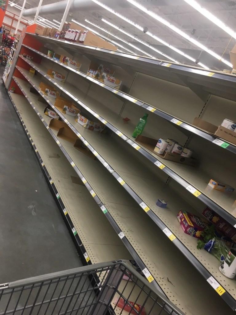 Surviving the Coronavirus pandemic - Empty Grocery Shelves