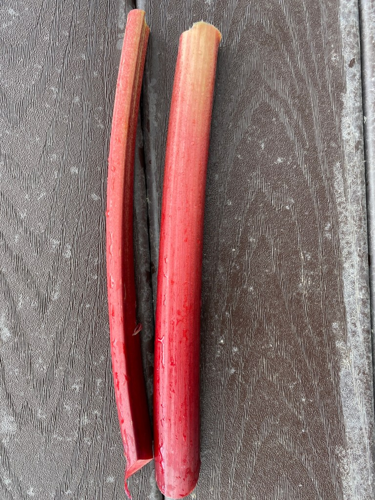 Recipes and tips for growing and cooking with rhubarb #homebakedjoy