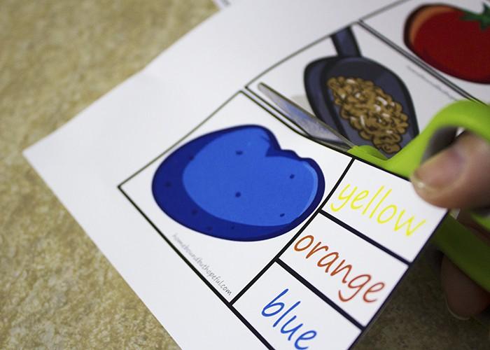 Garden Safari Vegetable Soup Literacy Game
