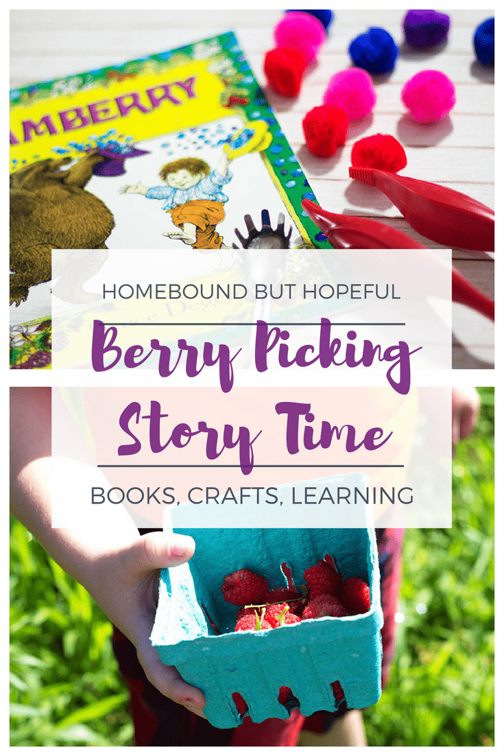 Berry Picking Story Time | Ideas for books, crafts, and learning activities to bring kid lit to life. | Jamberry - Fine Motor Pom Pom Color Sort
