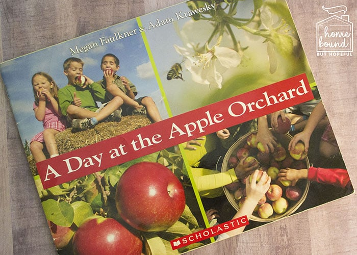 Apple Picking Story Time- A Day at the Apple Orchard
