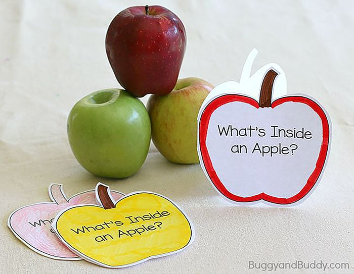 Apple Picking Story Time- Buggy And Buddy