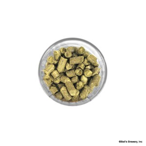 citra pellet hops homebrewing
