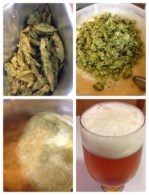 Brewing More Beer's Pliny the Elder Kit!