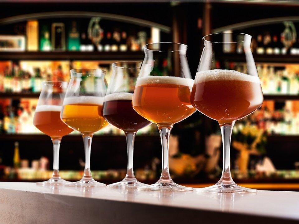 Teku 3.0 Craft Beer Tasting Glasses by Rastal, Set of 6, 14.2ounce, Clear