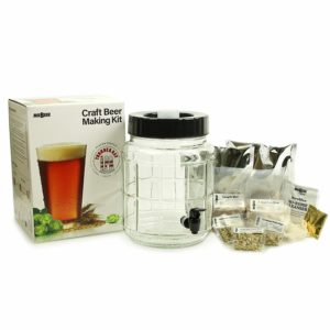 Mr. Beer Thunder Bay IPA 1 Gallon Craft Beer Making Kit With Glass Fermenter and Thunder Bay IPA Specialty Grain Recipe