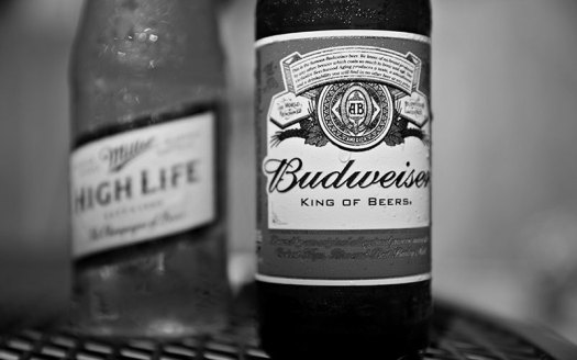 AB inbev purchases northern brewer and midwest supplies