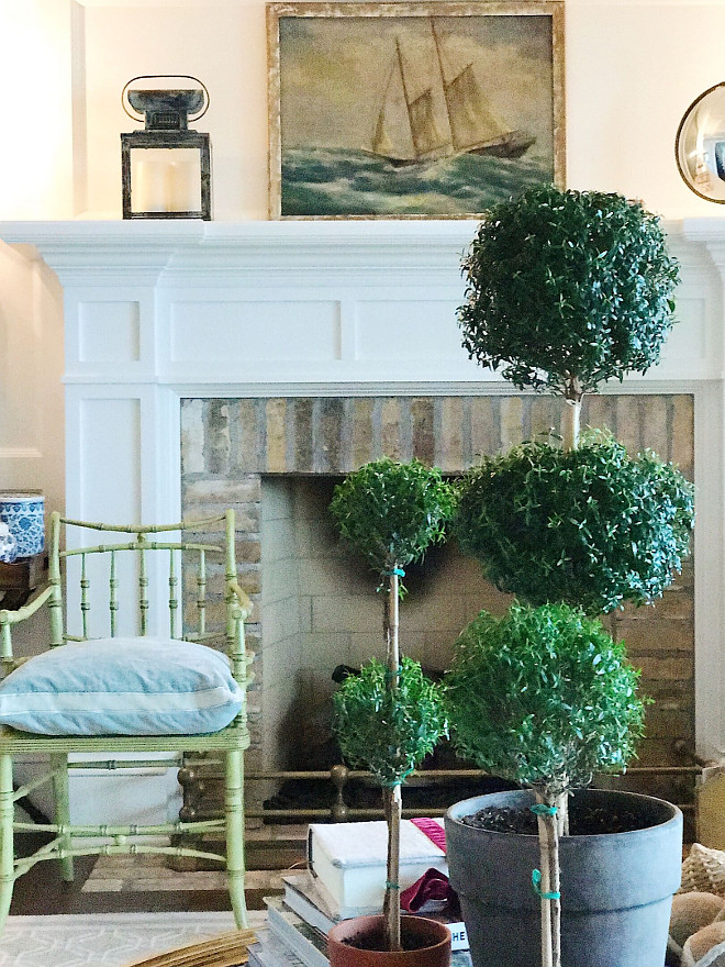Topiaries. The ladies (myrtles) travel from room to room and I love how easy going they are! They love the southern sunlight in the living room. Lantern from HomeGoods. Vintage art (the best collection I've ever seen) The Atelier Collection. Beautiful Homes of Instagram @SweetShadyLane