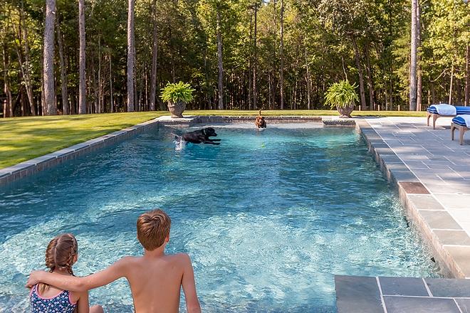 Pool backyard with pets kids pool summer bluestone pool patio #pool #patio