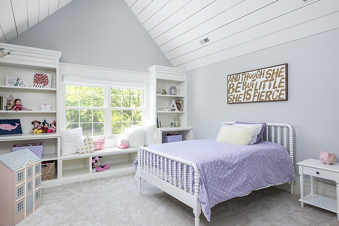 Big Chill Sherwin Williams Big Chill Sherwin Williams Paint color Big Chill Sherwin Williams Big Chill Sherwin Williams #BigChillSherwinWilliams #SherwinWilliams