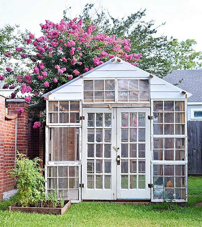 Greenhouse built with old windows I wanted to save all the old windows to have a functional greenhouse built in my backyard #greenhouse #backyard