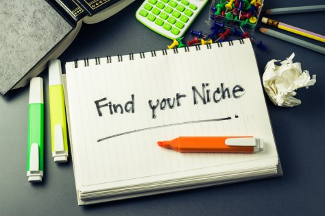 Find Your Niche and Make Money Online