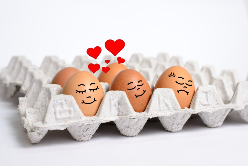 Egg Newsletter - Marketing You Can Touch