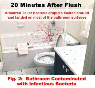 Toilet_-_Contaminates_Bathroom_2_large