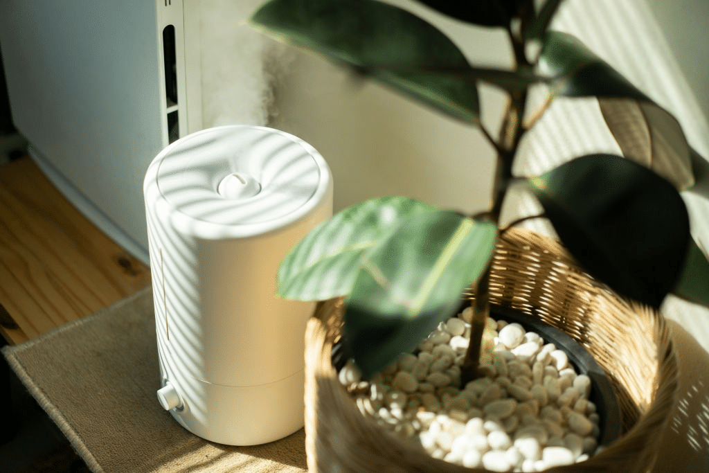 best-humidifier-for-dry-skin-2019