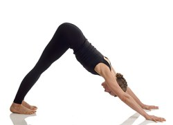 The Downward Dog - An Age Old Yoga Exercise w/ Modern Day ...