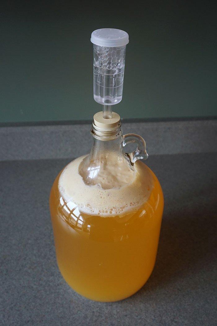 Ginger Apple Hard Cider Recipe Home Cider Making