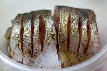 horno de paso pescado a la plancha 1