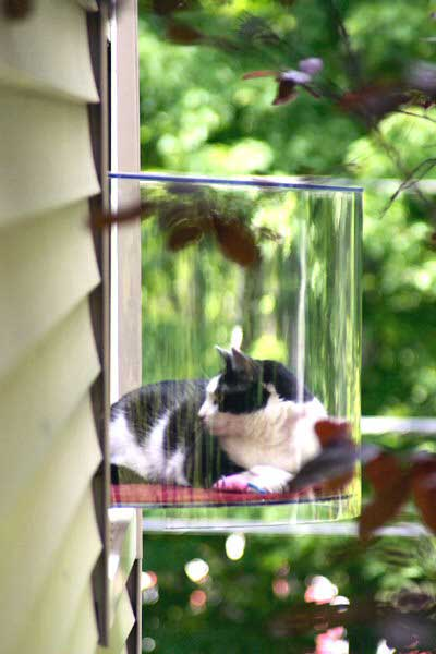 HDI-DIY-Pet-Projects-005