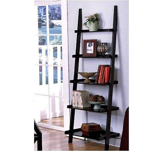 lean to bookshelf