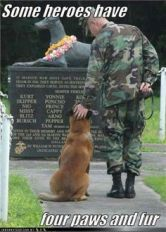 memorial for dogs lost in war