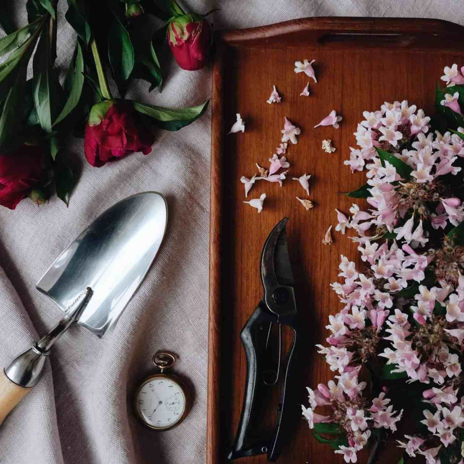 Gorgeous Gardening Tools - perfect gifts for garden lovers | Home for the Harvest