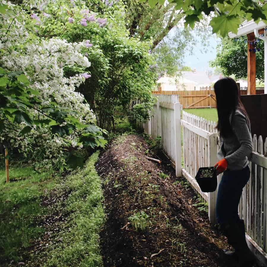 DIY Urban Hugelkultur Raised Garden Bed | Home for the Harvest Gardening Blog