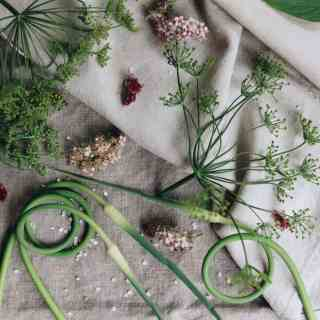 Garlic Scapes and Dill| Home for the Harvest Gardening Blog