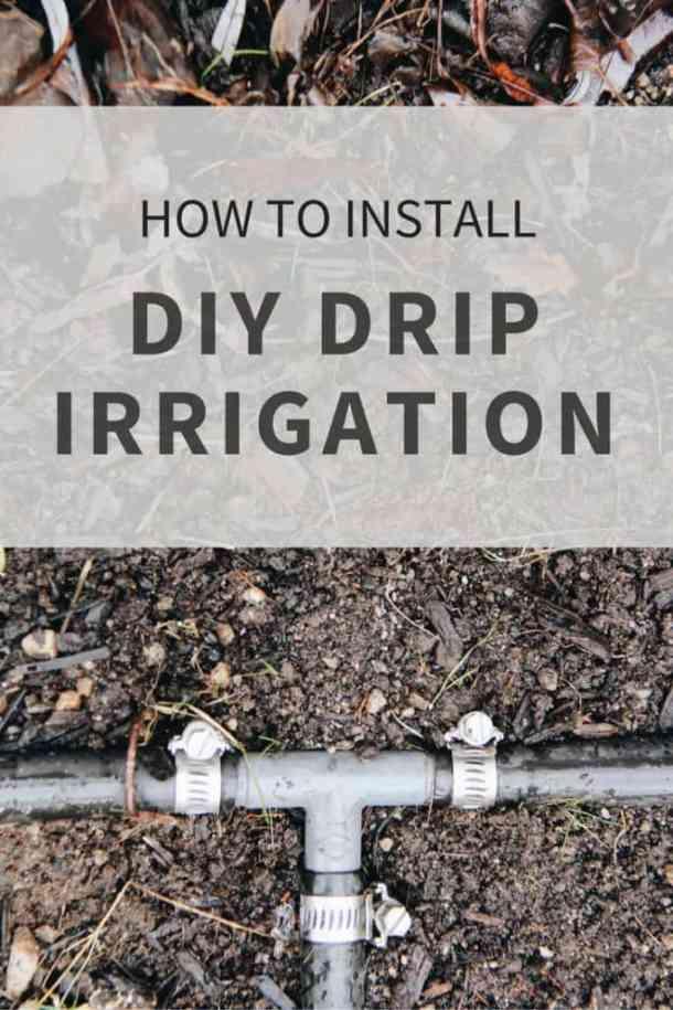 How to Install DIY Drip Irrigation | Home for the Harvest | www.homefortheharvest.com