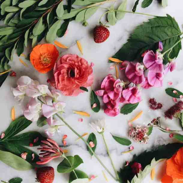 Organic Gardening   Home for the Harvest Gardening Blog