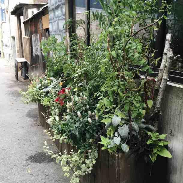 Bellaflora Nelson Exterior Container Arrangement | Home for the Harvest Blog