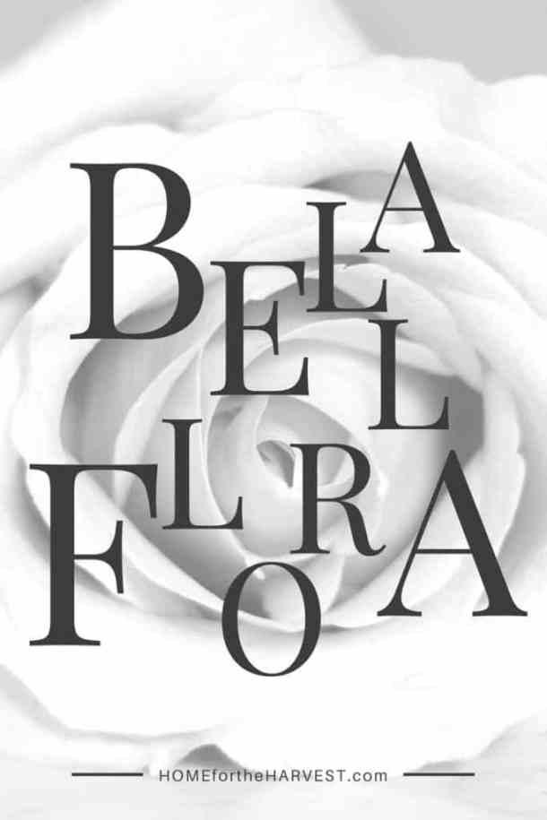 BellaFlora | Home for the Harvest