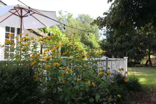 Deck Perimeter Garden | Home for the Harvest Blog