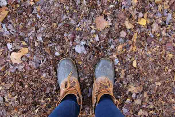 Composting Leaves | Home for the Harvest Blog
