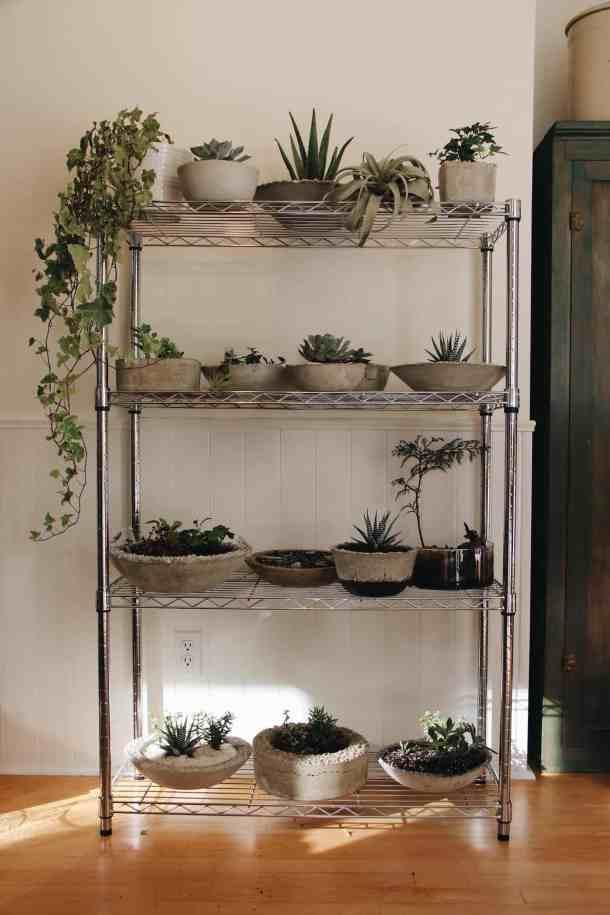 concrete succulent terrarium shelf with concrete and succulent glass bowls
