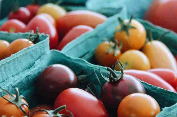 5 Easy Common Vegetables to Grow and Save Money   Home for the Harvest