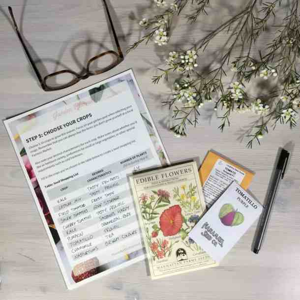 How to Prepare for a Seed Swap | Home for the Harvest