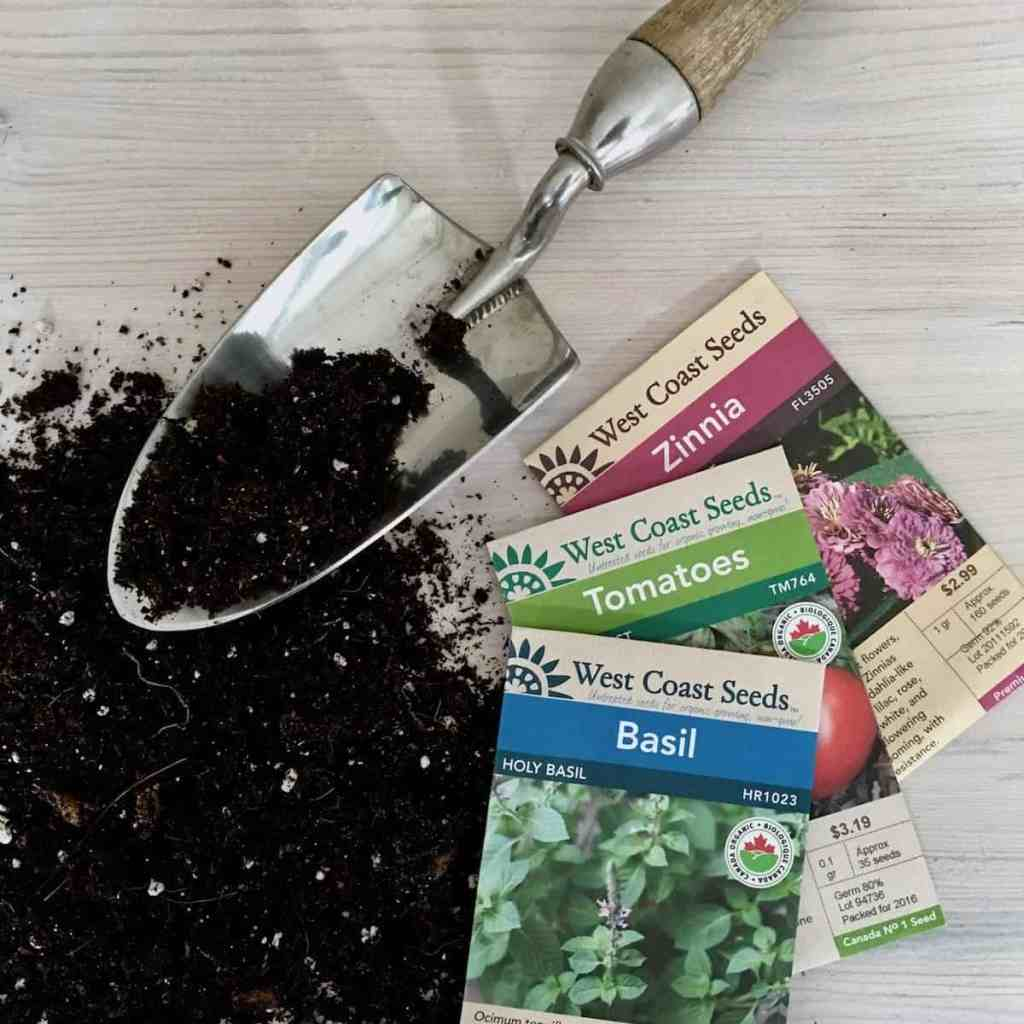Ultimate Seed Starting Guide: How to Grow Seeds into Healthy Plants