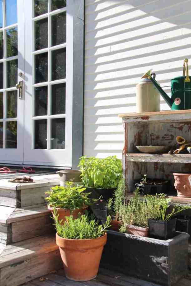 How to Start a Garden - Discovering Which Type of Garden is Right for You   Home for the Harvest