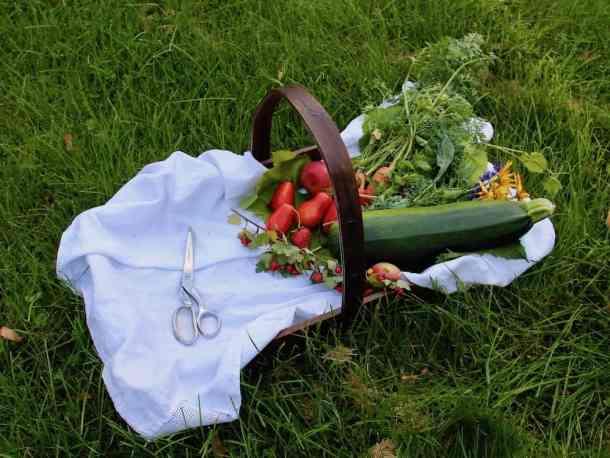 How to Start a Garden - Harvest Season   Home for the Harvest