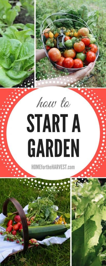 In-Depth Tutorial About How to Start a Garden - Includes Garden Planning, Planting, Care, and Harvest   Home for the Harvest