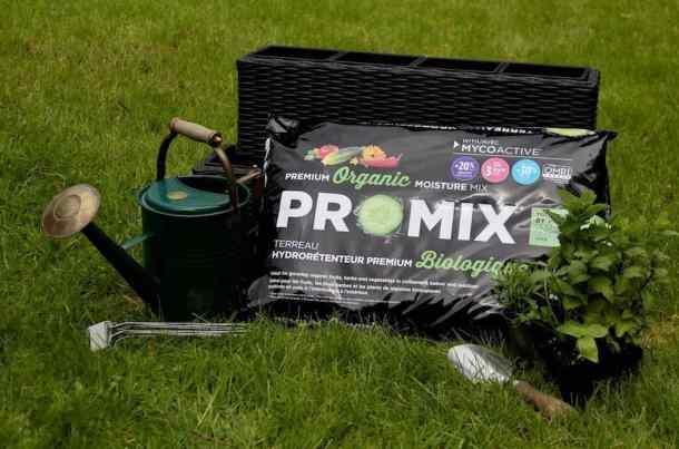 watering can herb plants trowel herb garden planter and herb garden soil