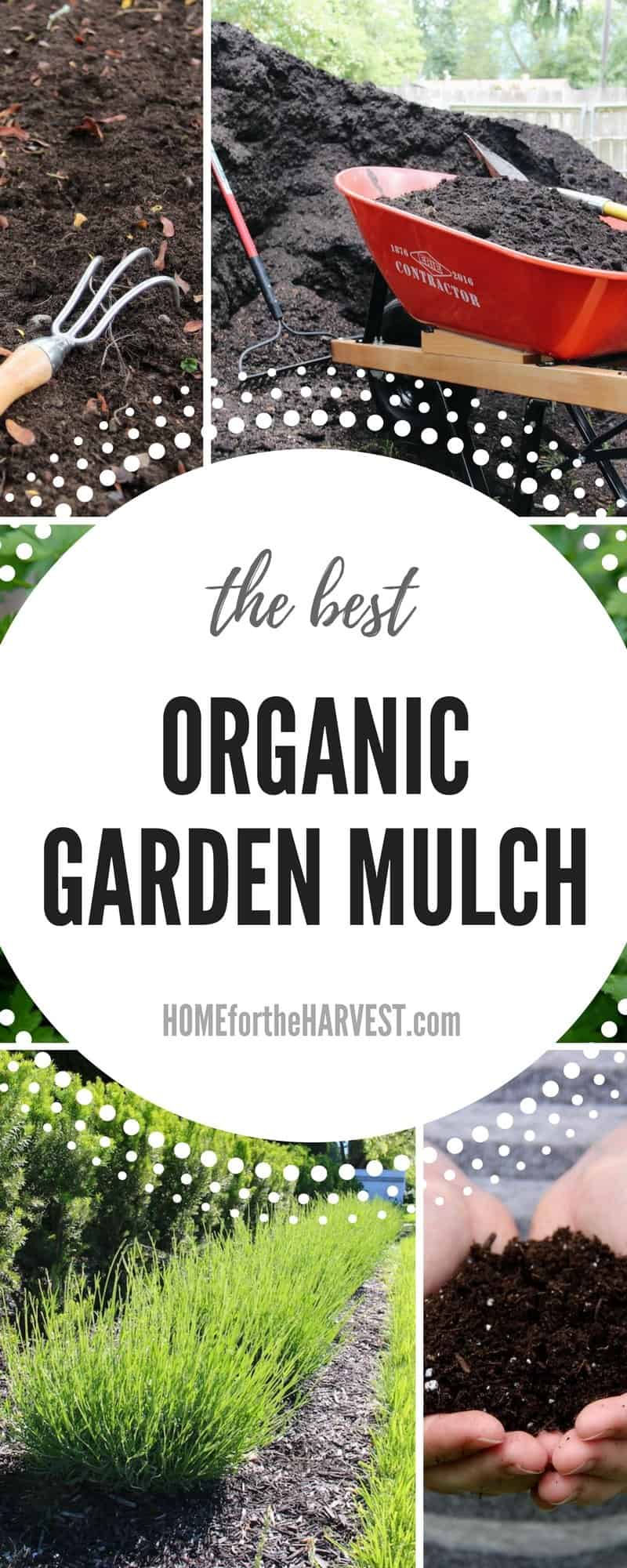 3 Easy Organic Mulch Options for a Thriving Garden - Home for the ...